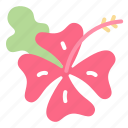 floral, flower, garden, hawaii, nature, plant