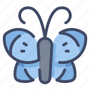 animal, bug, butterfly, fly, insect, moth