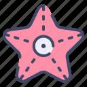 starfish, beach, animal, star, ocean, sea icon
