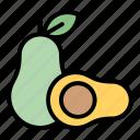 tropical, avocado, fruit, summer