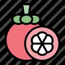 tropical, mangosteen, fruit, healthy