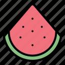 tropical, watermelon, fruit, summer