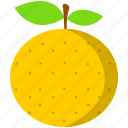 fruit, orange, tropical, yellow, food, healthy