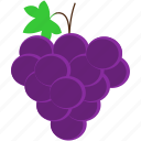 food, fruit, grape, healthy, purple, tropical icon