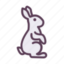 animal, bunny, day, easter, rabbit