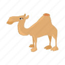 africa, animal, camel, cartoon, desert, tourism, travel icon