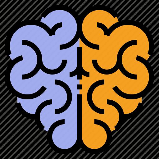 Brain, idea, mind, thinking icon - Download on Iconfinder