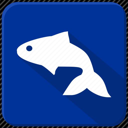 fish, sea, small, underwater icon