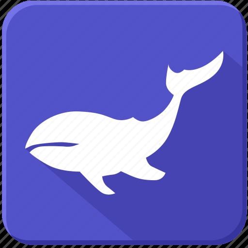 ocean, sea, underwater, whale icon