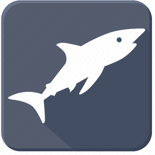 predator, sea, shark, underwater icon