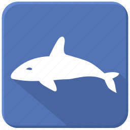sea, shark, underwater, whale icon