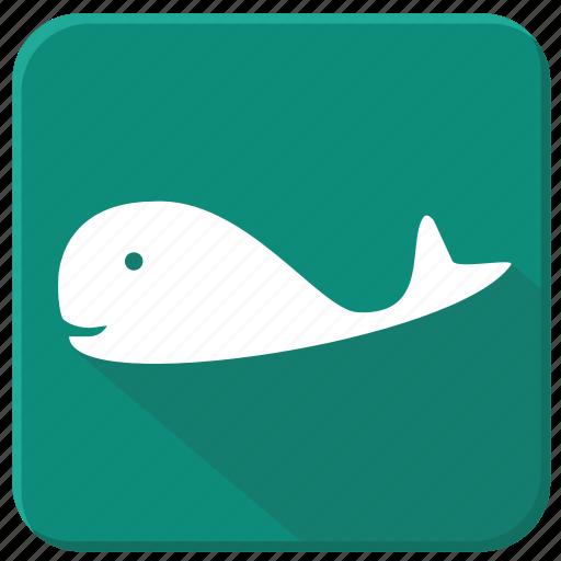 fish, sea, underwater, whale icon