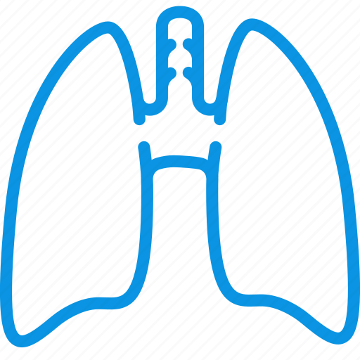 anatomy, lungs, medicine icon