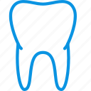 anatomy, biology, healthy, medicine, teeth, tooth icon
