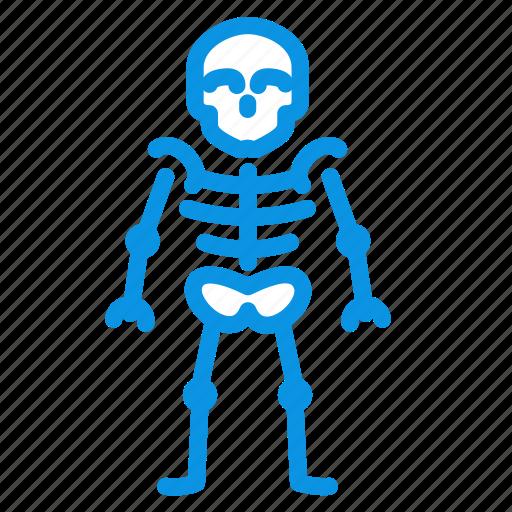anatomy, bones, skeleton, skull icon