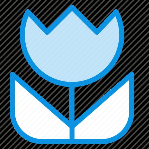 flower, macro, photo icon