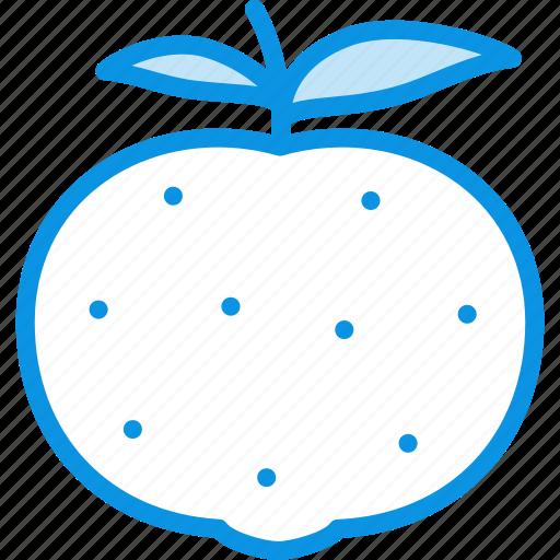 citrus, mandarine icon