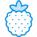 berry, food, raspberry icon