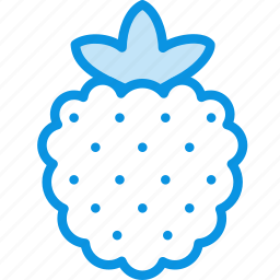 berry, food, raspberry icon