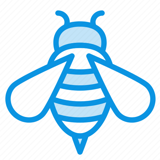 bee, bug, insect icon