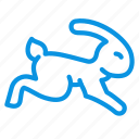 fast, rabbit icon