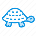 animal, long, nature, relax, slow, turtle icon