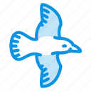 animal, bird, crow, fly, magpie, seagull icon