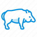 animal, aper, boar, pig, wild icon