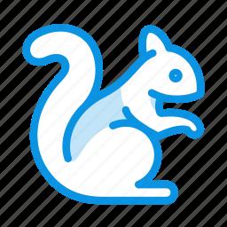 animal, rodent, sciurus, squirrel icon