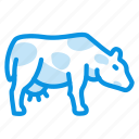cow, milk, udder icon