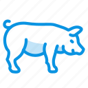 fat, pig, piggy icon