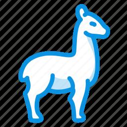 animal, lama, llama, wool icon