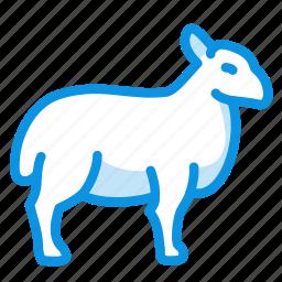 animal, ewe, mutton, ram, sheep icon