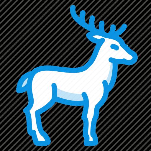 animal, deer, elk, hoof, horns icon