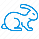 animal, friendly, rabbit, tested