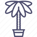 nature, palm, plant icon