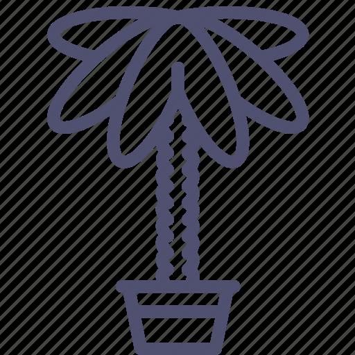 decoration, home, nature, palm, plant icon