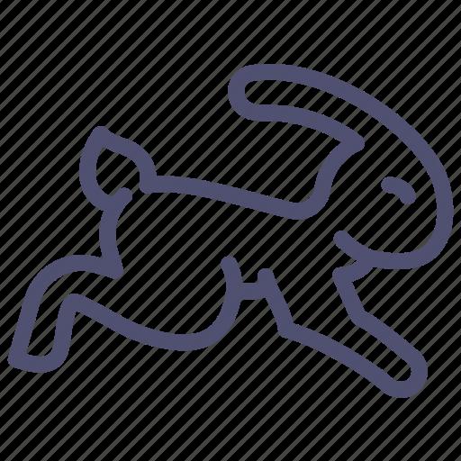animal, fast, nature, quick, rabbit, speed icon
