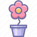 flower, pot, romantic icon