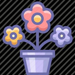 flowers, pot, present icon