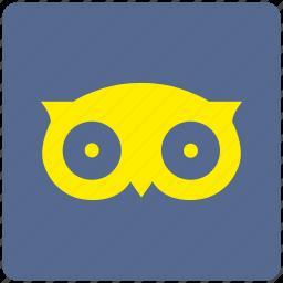 app, bird, tripadviser icon