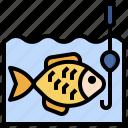 fishing, hobbies, free, time, hook, steel, fish