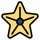 beach, sea, star, starfish icon