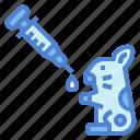 hamster, vaccine, vaccination, animal, syringe