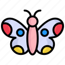 butterfly, insect, bug, nature, fly, animal, wings