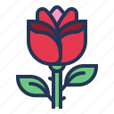 flower, gift, love, relationship, romance, rose, valentine day icon
