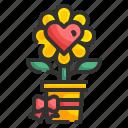 plant, love, flower, valentines, heart, ribbon, blossom