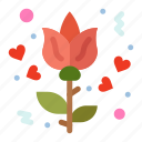flower, love, rose icon