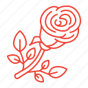 flower, red, rose icon