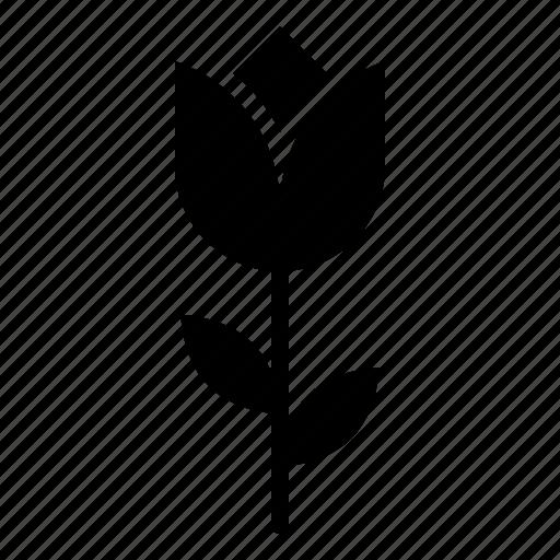 Flora, floral, flower, romantic, tulip, valentine icon - Download on Iconfinder